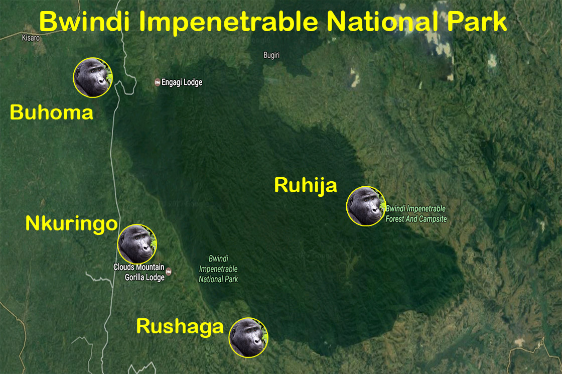 Click to enlarge image map_bwindi_national_park.jpg